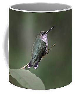 Hummingbird Coffee Mug by William Tanneberger