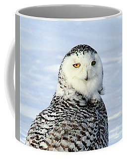 Female Snowy Owl Coffee Mug