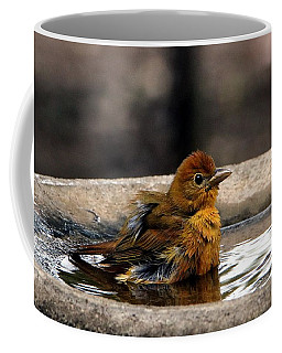 Female Summer Tanager In Bird Bath Coffee Mug