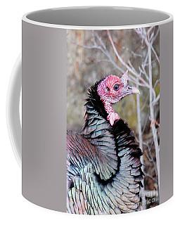 Female Wild Turkey Coffee Mug