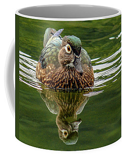 Female Wood Duck Coffee Mug