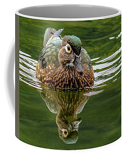 Coffee Mug featuring the photograph Female Wood Duck by Jean Noren