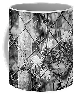 Fence And Flowers. Coffee Mug
