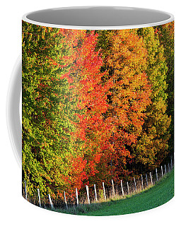 Coffee Mug featuring the photograph Fence Line Foliage by Alan L Graham