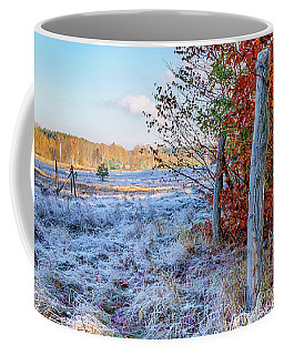 Coffee Mug featuring the photograph Fenced Autumn by Dmytro Korol