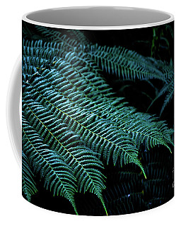 Patterns Of Nature 6 Coffee Mug by Zaira Dzhaubaeva