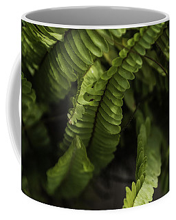 Fern Coffee Mug