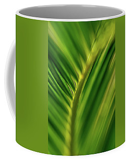 Coffee Mug featuring the photograph Fern by Jay Stockhaus