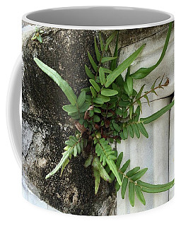 Coffee Mug featuring the painting Fern by Kim Nelson