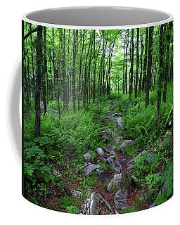 Ferns Above Lehigh Gap 2 Coffee Mug