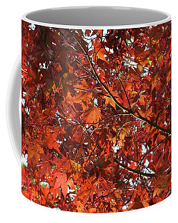 Coffee Mug featuring the photograph Festive Japanese Maple by Michele Myers