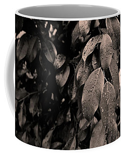 Ficus Leaves Coffee Mug by Tim Good