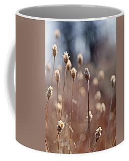 Field Of Dried Flowers In Earth Tones Coffee Mug by Brooke T Ryan
