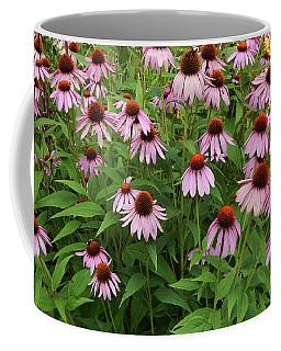 Field Of Echinacea Coffee Mug