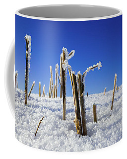 Field Of Frosty Straws Coffee Mug