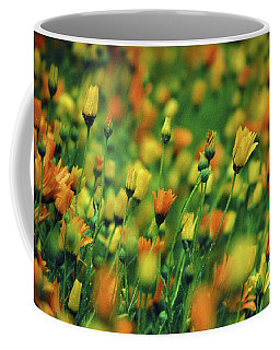 Field Of Orange And Yellow Daisies Coffee Mug