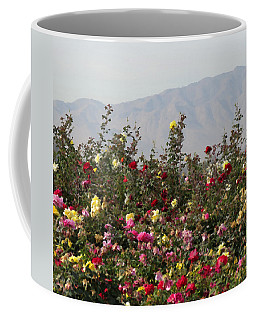 Coffee Mug featuring the photograph Field Of Roses by Laurel Powell