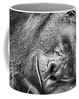 Coffee Mug featuring the photograph Field Of Sadness by David Millenheft