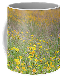 Field Of Yellow Flowers In A Sunny Spring Day Coffee Mug