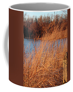 Coffee Mug featuring the photograph Amber Brush On The River by Melinda Blackman