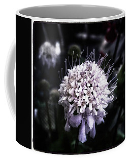 Coffee Mug featuring the photograph Field Scabious. A Member Of The by Mr Photojimsf