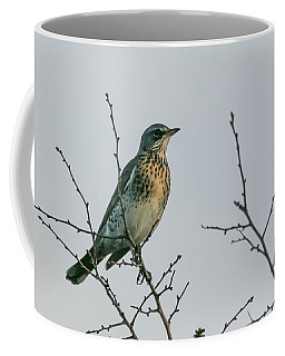 Fieldfare Coffee Mug