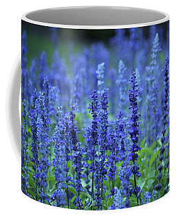 Coffee Mug featuring the photograph Fields Of Blue by Rowana Ray