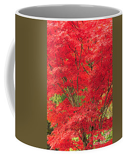 Fiery Japanese Maple Coffee Mug