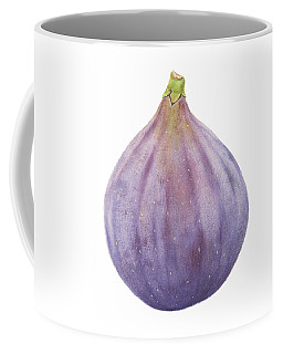 Fig Watercolor Coffee Mug by Taylan Apukovska