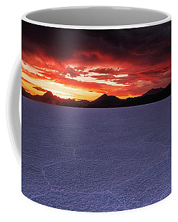 Coffee Mug featuring the photograph Fight For The Light by Edgars Erglis