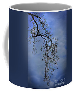 Coffee Mug featuring the photograph Filigree From On High by Skip Willits
