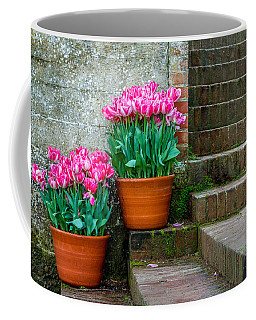 Coffee Mug featuring the photograph Filoli Tulips by Bill Gallagher