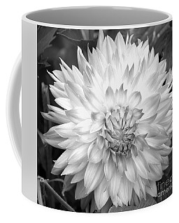 Coffee Mug featuring the photograph Filter Series 101 by Jeni Gray