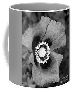 Filter Series 102 Coffee Mug