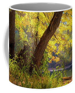 Filtered Light 2 Coffee Mug