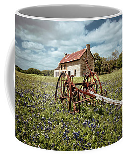 Coffee Mug featuring the photograph Final Resting Place by Linda Unger