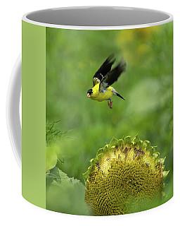 Finch Flight Coffee Mug