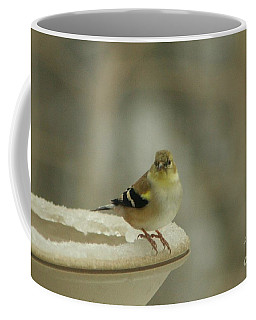 Coffee Mug featuring the photograph Finch In Winter by Barbara S Nickerson