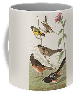 Finches Coffee Mug