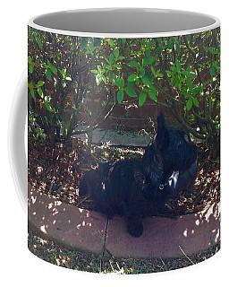 Finding Shade Coffee Mug