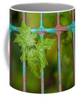 Coffee Mug featuring the photograph Finding The Light by Fran Riley