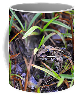 Coffee Mug featuring the photograph Fine Frog by Al Powell Photography USA