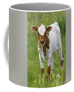 Fine Looking Longhorn Calf Coffee Mug
