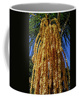 Coffee Mug featuring the photograph Fine Wine Cafe Cascading Seed Pod by Aimee L Maher Photography and Art Visit ALMGallerydotcom