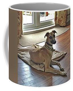 Finly - Ava The Saluki's New Companion Coffee Mug