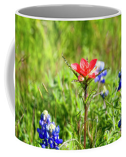 Coffee Mug featuring the photograph Fire Cracker by Joan Bertucci