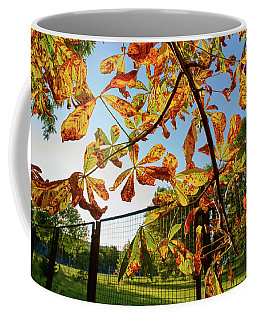 Coffee Mug featuring the photograph Fire Leaves by Tgchan