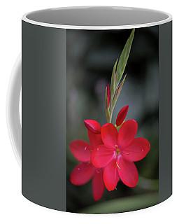 Fire Lily 2 Coffee Mug
