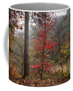 Fire On The Backroads Coffee Mug