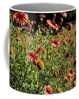 Firewheel Wildflower Coffee Mug